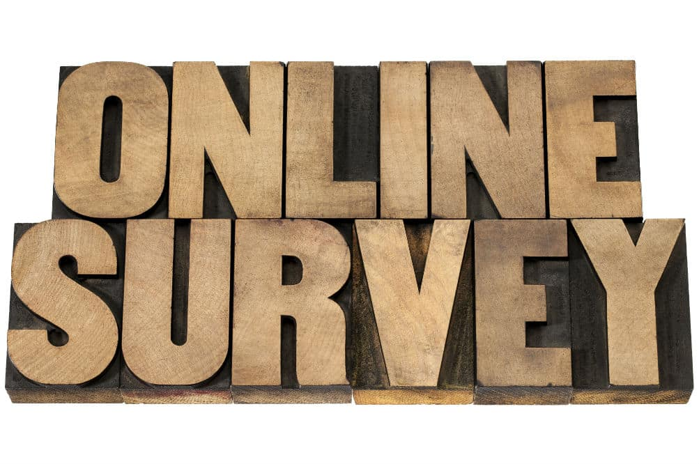 Future Talkers: Is it the Future of Surveys