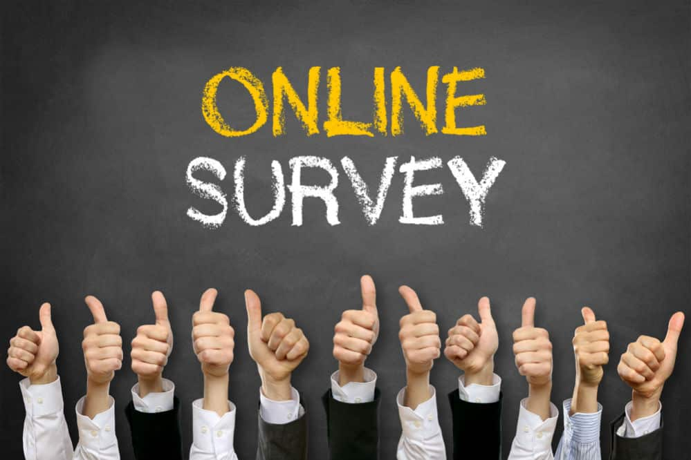 Toluna: King of the Online Survey Companies?