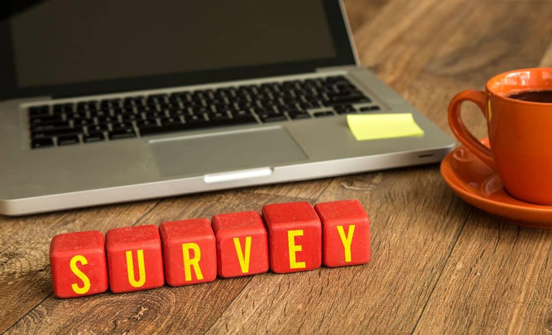 SurveyEveryOne Review