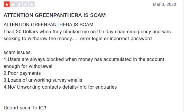 greenpanthera another negative review screenshot