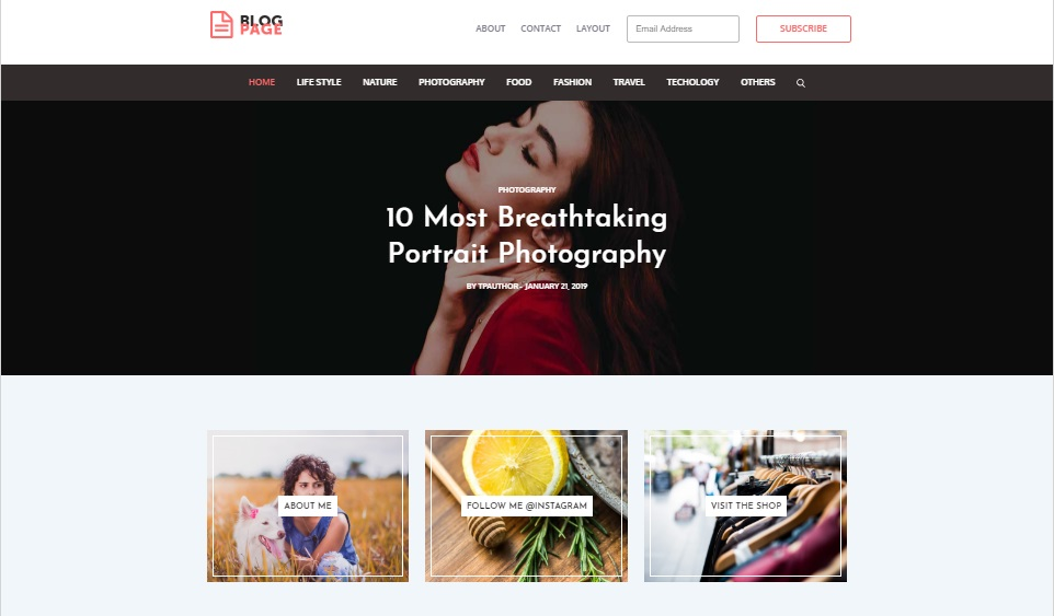 Blog Page wordpress theme preview