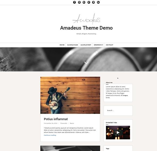 amadeus wp theme preview