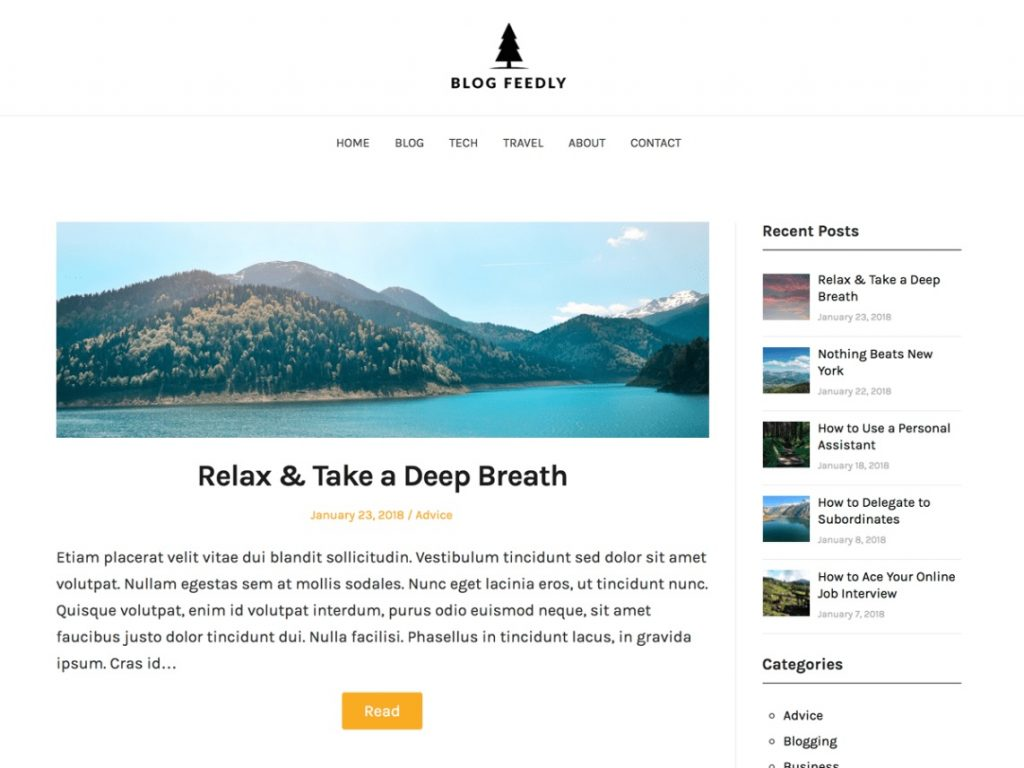 blog feedly wp theme preview