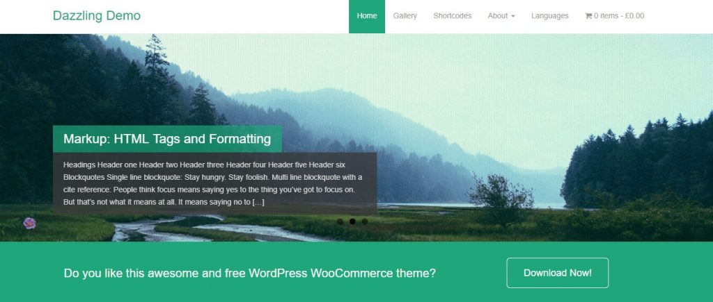 dazzling minimal wordpress theme layout