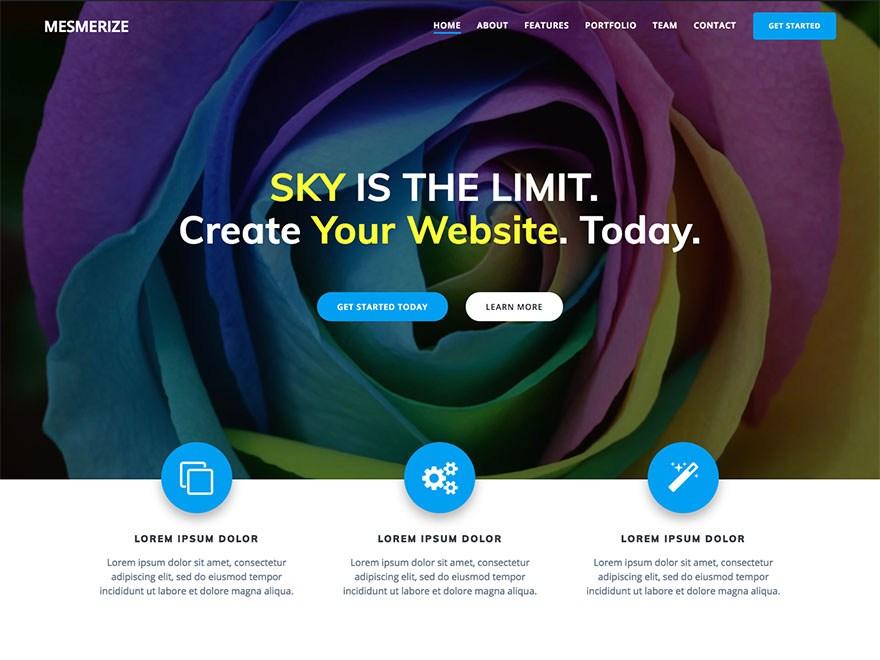 mesmerize wp theme layout