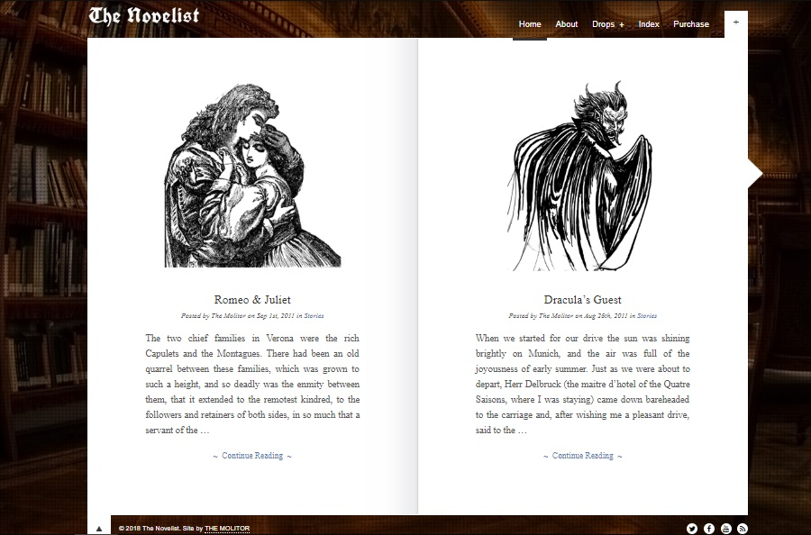 novelist wordpress theme layout