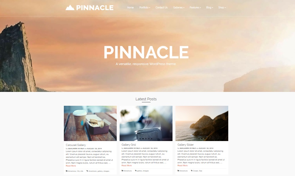 pinnacle wordpress theme preview