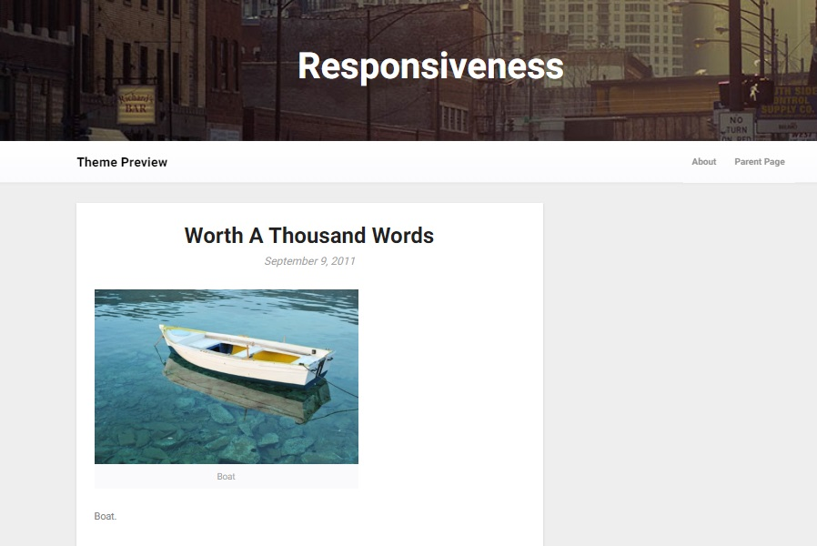 responsiveness wordpress theme preview