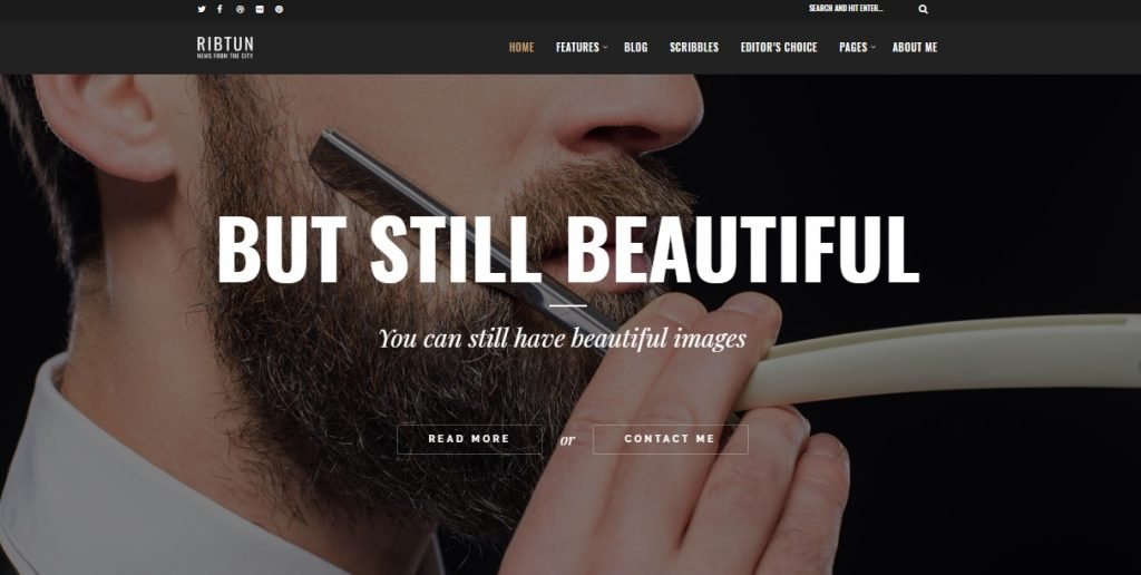 ribtun wordpress theme