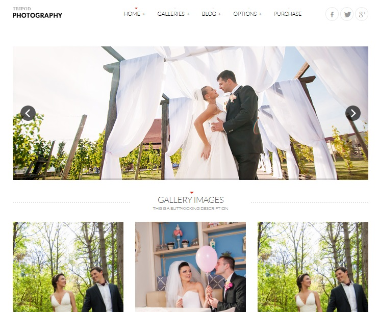 tripod wordpress theme preview